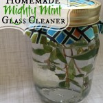 A simple recipe for all natural glass cleaner. I love this light minty smell and nothing makes a room feel cleaner than sparkling windows.