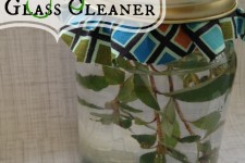 Mighty Mint Glass Cleaner