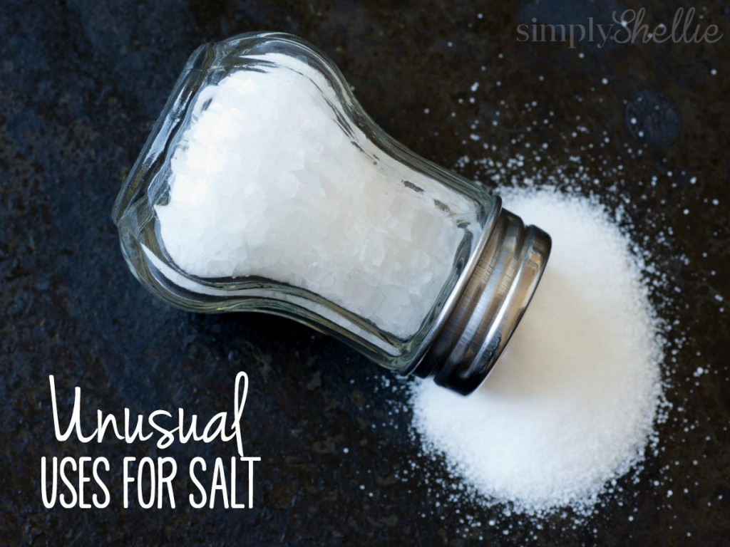 I know we all use salt everyday in our cooking but did you know salt can do so much more than just seasoning your dinner? I have tried many of these tips myself. My favorites are numbers 1, 5, 9 and 10.