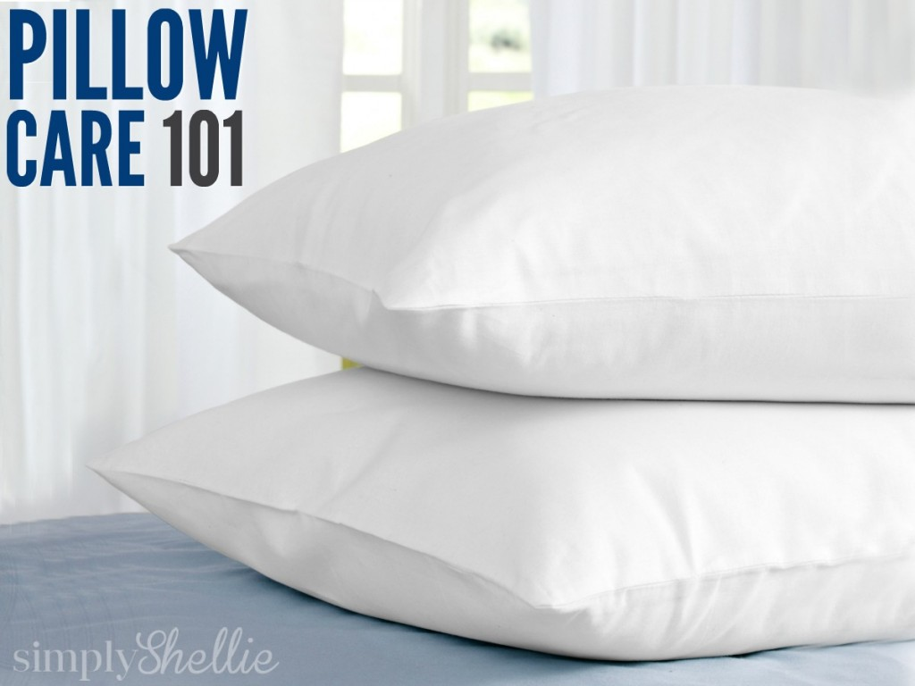 pillow care 101 how to wash whiten dry pillows. Black Bedroom Furniture Sets. Home Design Ideas