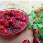Homemade Cranberry Salsa Recipe