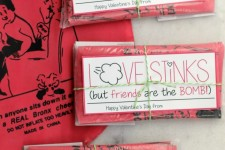 """Love Stinks"" Whoopee Cushion Valentine"