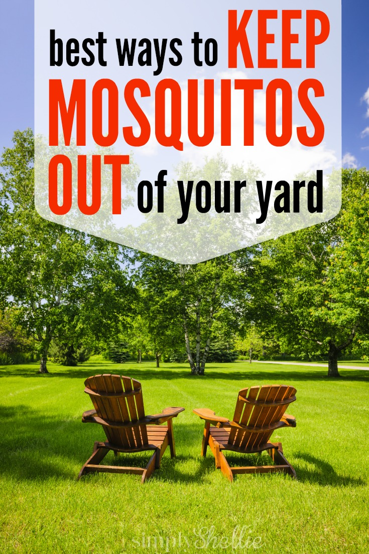 How to Keep Mosquitos Out