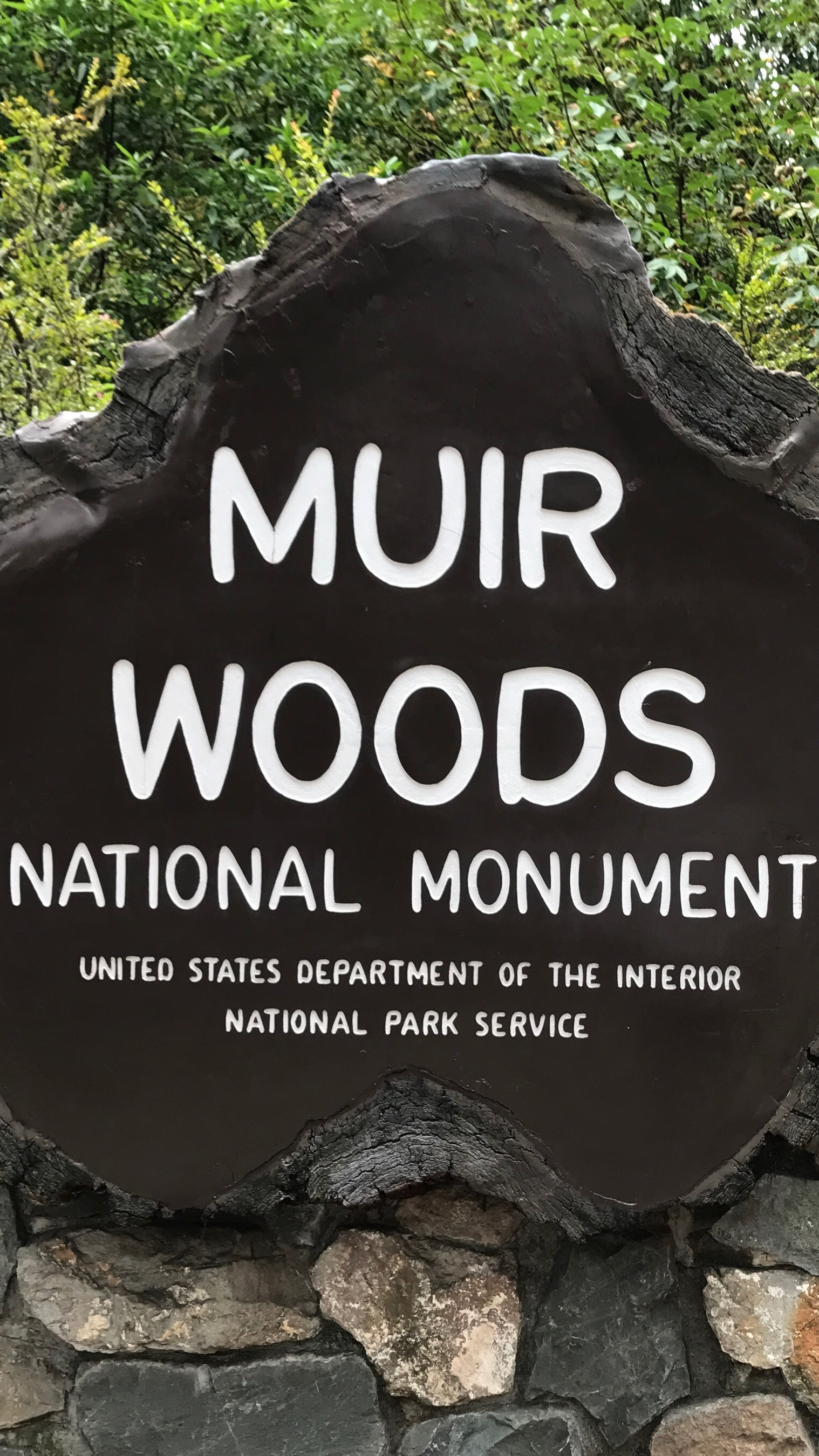 Exploring Muir Woods