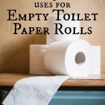 10 Unusual Uses for Empty Toilet Paper Rolls